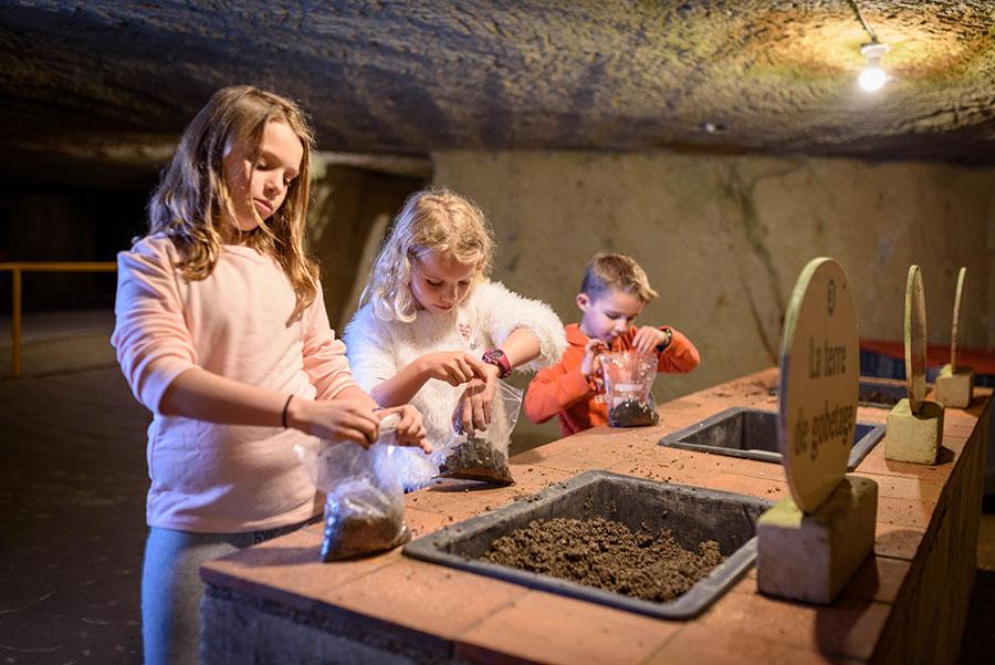 Paddenstoelengids in het Saumur-paddestoelmuseum