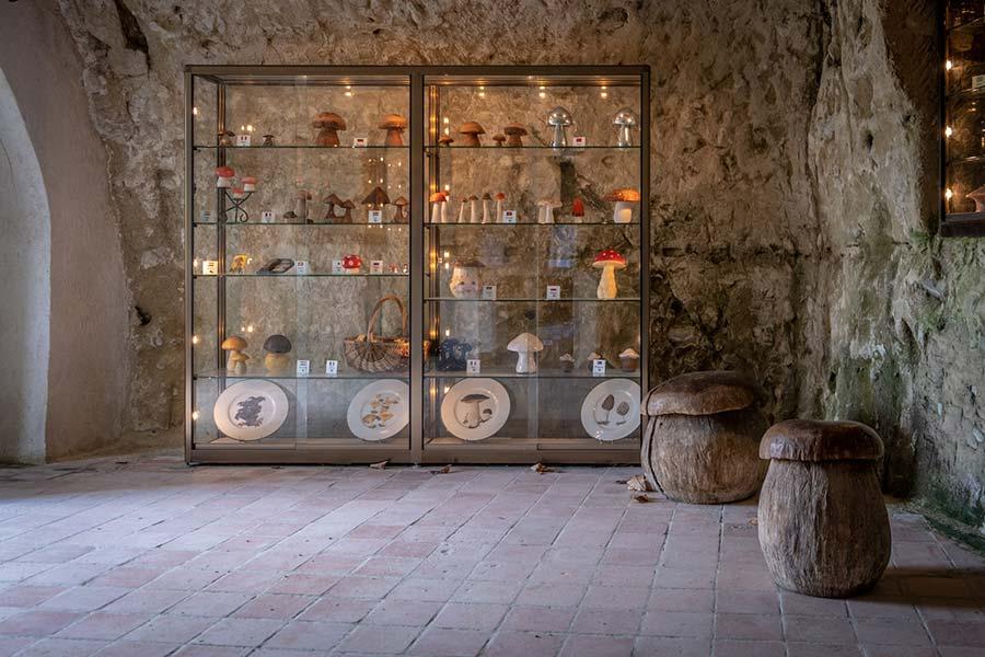 Das Höhlenhaus des Pilzmuseums