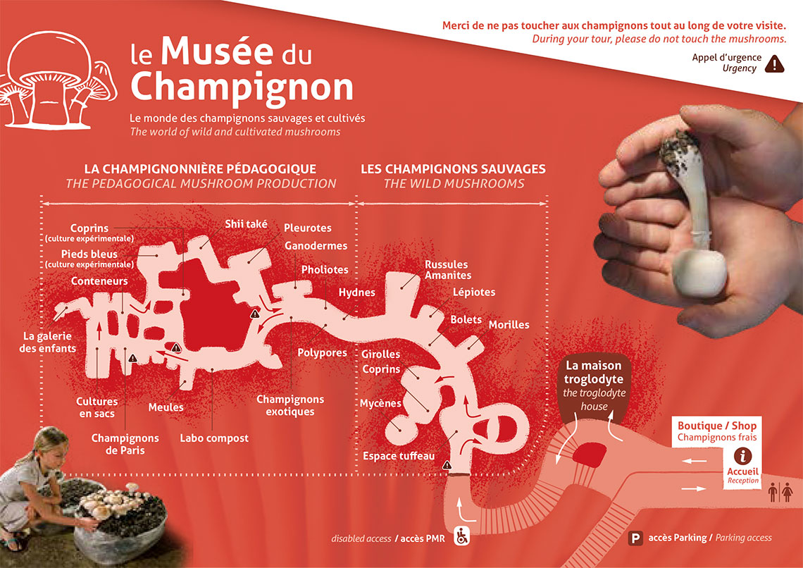 map of the mushroom museum