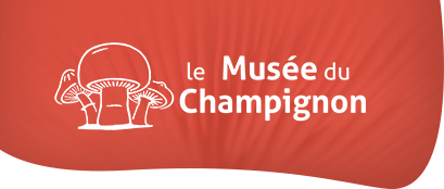 The Mushroom Museum in Saumur: more than 300 species of mushroom to discover in our troglodytes