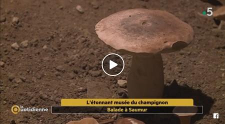 Frankreich 5 Entdeckungsvideo